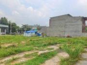 Hai thửa liền kề cùng mục đích sử dụng và chung chủ sở hữu được hợp thửa đất?