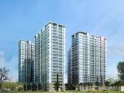 Căn hộ chung cư Asa Light Quận 8 TP. Hồ Chí Minh