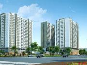 Căn hộ chung cư Tara Residence Quận 8 TP. Hồ Chí Minh