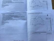 Cần bán đất 4500m2 tại ấp 1 xã Bình Lộc sát khu công nghiệp sdt 0931791806