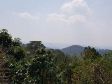 Bán nhà và đất tt Tp Đà Lạt tiện xây ks view núi và thung lũng đẹp