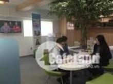 Cho thuê văn phòng 50- 200- 500 m2, Giá chỉ từ 160k/m2/tháng  mặt phố Hoàng Quốc Việt, Cầu Giấy