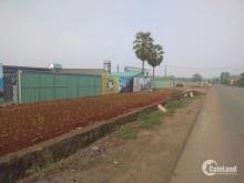 Bán đất tại dự án khu đô thị Cát Tường Phú Hưng, Đồng Xoài, Bình Phước, diện tích 100m2, giá 827Tr
