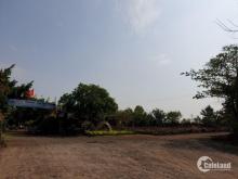 Bán đất đầu tư, ngay thị trấn Trảng Bom, giá hơn 300 triệu