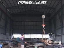 Cho thuê nhà xưởng mới đẹp tại Hậu Lộc Thanh Hóa DT 6010m2