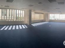 Văn phòng cho thuê Quận 7, diện tích 152.5m2, giá chỉ từ 380 nghìn/m2/tháng, sàn đã lót thảm. Liên hệ 0974040260