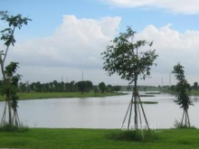 Mở Bán Giai Đoạn F1 – 30 Nền Đất - Khu Đô Thị Tân Tạo Bình Chánh – TP.HCM