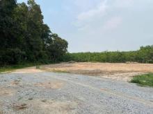 Bán đất ngay cổng chính KCN Vsip 2a