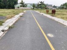 Chính chủ cần bán đất tại Tỉnh Đồng Nai