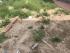 Bán 41m2 đất thổ cư Minh Khai, Bắc Từ Liêm ngõ thông ô tô đỗ cửa