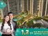 BÁN CĂN HỘ CAO CẤP VINHOMES SMART CITY - DỰ ÁN IMPERIA, CHIẾT KHẤU NGAY 10%, LH: 0968.446.889